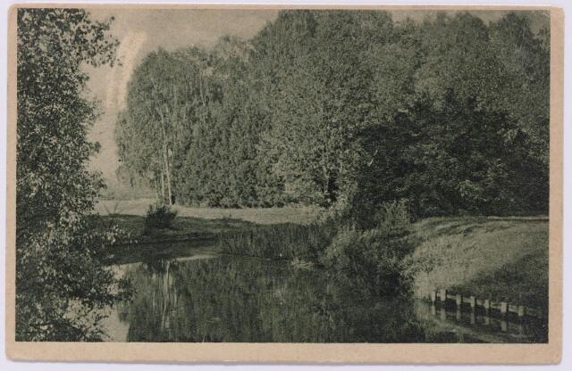 """043583 - Het pas aangelegde wandelbos in Tilburg, afgebeeld op een reclamekaart van de firma Janssen & Bierens aan de Bredaseweg. Deze firma was beter bekend als """"Stoomververij en Chemisch Wasscherij de Regenboog""""."""