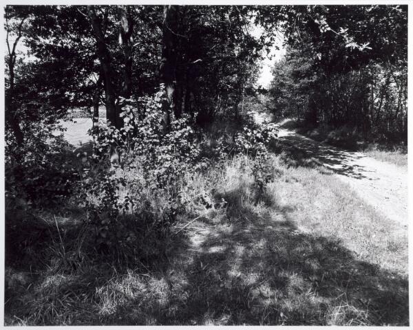 015360 - Landschap. Omgeving van de voormalige spoorlijn Tilburg - Turnhout, in de volksmond ´Bels lijntje´ genoemd