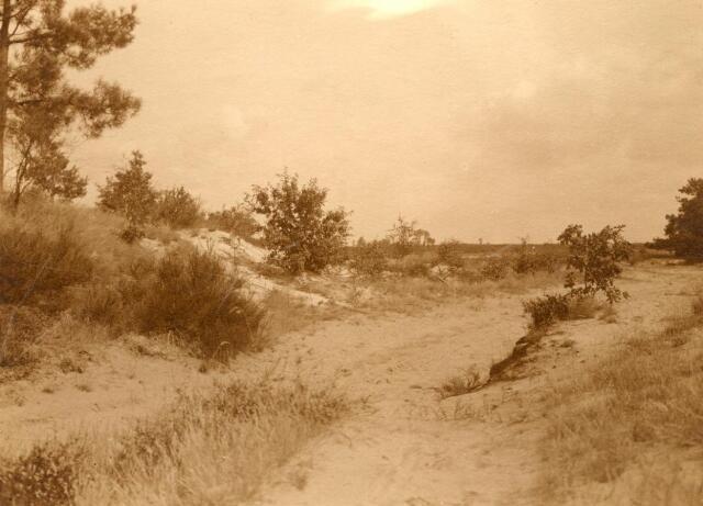 600771 - Landschap in de omgeving van Loon op Zand. Duinen en bossen.Kasteel Loon op Zand. Families Verheyen, Kolfschoten en Van Stratum