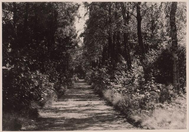 027868 - Oude Warande, Berkendreef