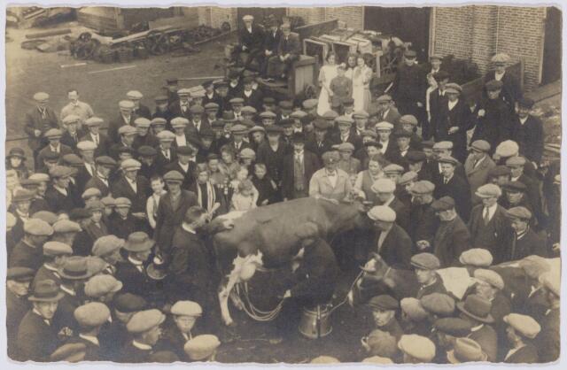 103744 - Tentoonstelling landbouw en veeteelt. Eerste demonstratie elektrisch melken op het terrein van Manille Bogaerts Groenstraat
