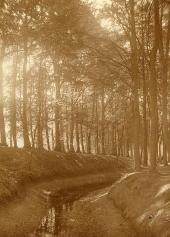 600798 - Landschap in de omgeving van Loon op Zand. Duinen en bossen.Kasteel Loon op Zand. Families Verheyen, Kolfschoten en Van Stratum
