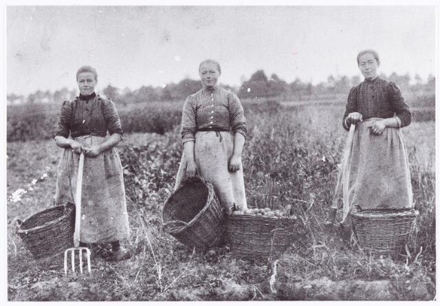 061938 - Landbouw. De boerinnen Jenna, Marie en Bet Mallens zijn hier de aardappelen aan het rooien.