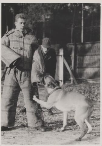 082060 - Hondensport. Opleiding van waakhonden voor de Koninklijke Luchtmacht. `Carlos` heeft een boef te pakken