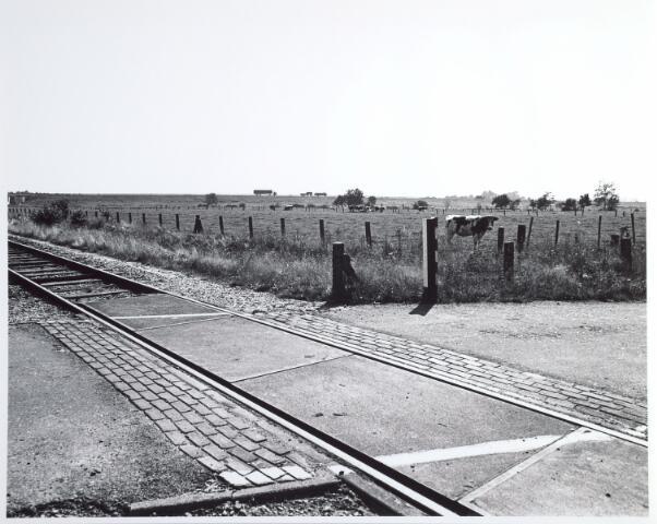 015336 - Landschap. Omgeving van de voormalige spoorlijn Tilburg - Turnhout, in de volksmond ´Bels lijntje´ genoemd