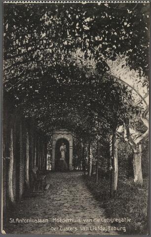 010779 - Antoniuslaan met beeld van de H. Antonius van Padua in de tuin van de zusters van liefde aan de Oude Dijk.