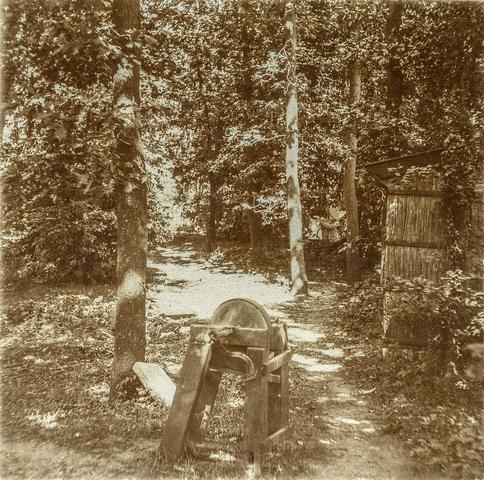 653583 - Bos, slijpsteen (Origineel is een stereofoto.)