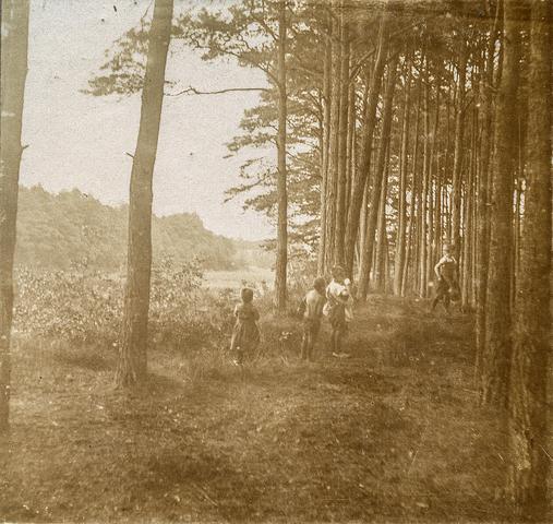 653581 - Natuurfoto. Vier personen in het bos (Origineel is een stereofoto.)