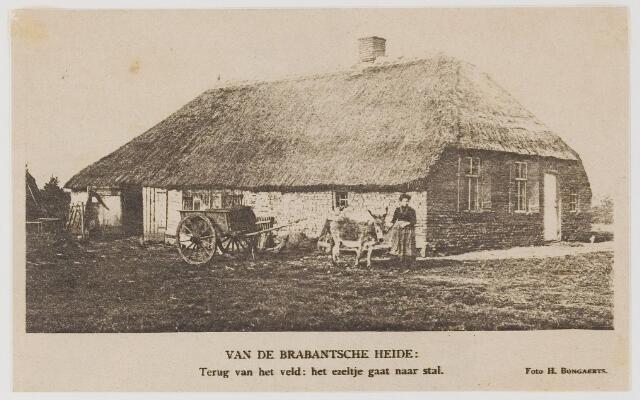 076525 - Het Brabantse plattelandsleven.