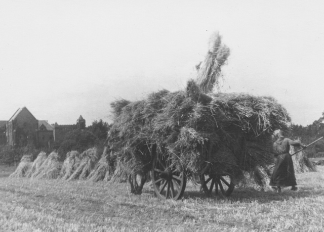 105285 - Monnikenleven Werkzaamheden op het land; hooien. De oogst van 1950 wordt binnengehaald. Kar met paard. Sint Paulusabdij Kloosters.