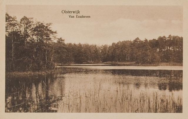 075181 - Serie ansichten over de Oisterwijkse Vennen.  Ven: Van Essenven. (Van Escheven)