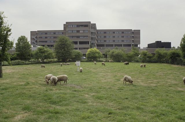 TLB023000728_001 - Gevel St. Elisabeth ziekenhuis.