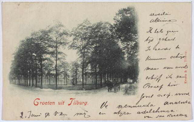 002824 - Het Wilhelminaparkgezien vanuit het oosten, links richting Gasthuisstraat, rechts richting Goirke.  Voor de aanleg van het Wilhelminapark werd het plein, eens het centrum van de herdgang Veldhoven voor allerlei doeleinden gebruikt door de bevolking. Nog in de jaren 1880-1883 werd het plein voor 273 gulden per jaar door de gemeente verpacht om er 'te hooien, te weiden of te bleken'. In de jaren 1897-1898 werd het plein veranderd in een park naar een ontwerp van de toen beroemde tuinarchitect Leonard Springer. Hem stond een besloten stukje landschap voor ogen, los van de stadse drukte.