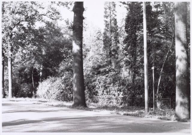 016205 - Tuin van het pand Bredaseweg 391 eind 1963