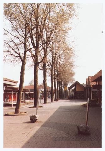 063627 - In mei 1988 werden alle bomen die midden op het winkelcentrum Eikenbosch stonden en voorheen langs de Abdijlaan stonden, gekapt
