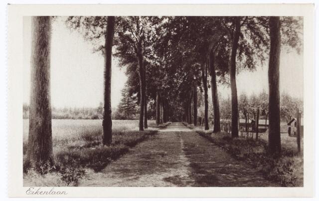 062099 - Kloosters. De Eikenlaan van de Abdij van Onze Lieve Vrouw van Koningshoeven aan de Eindhovenseweg 3