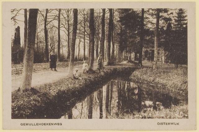 """073745 - de """"Gemullehoekenweg"""" gezien vanuit noordelijke richting."""