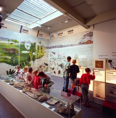 D-000275-2 - Noordbrabants Natuurmuseum, Spoorlaan