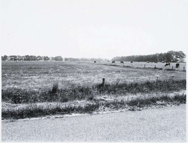 029306 - Reeshofweg