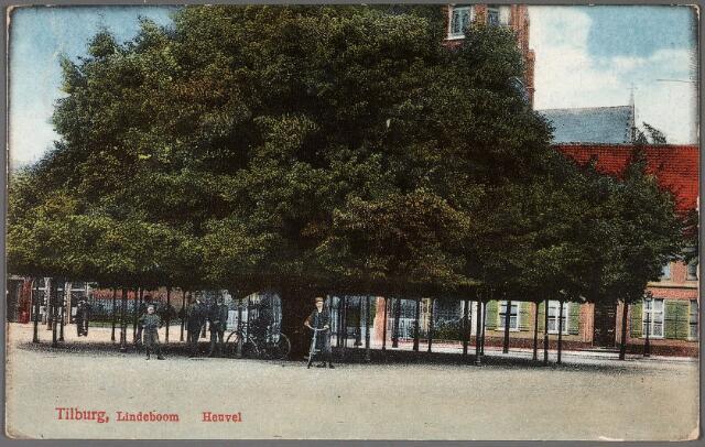 011175 - De lindeboom op de Heuvel.