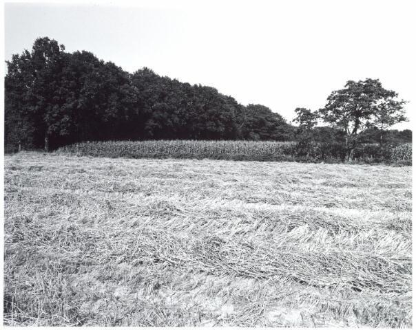 015446 - Landschap. Fase I de Blaak