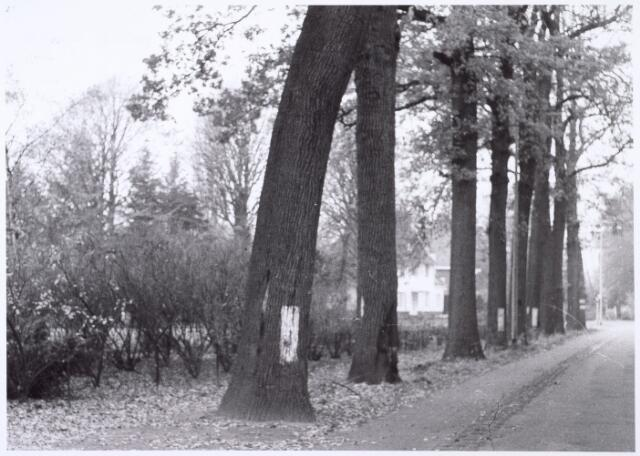 016459 - Pand Bredaseweg 448 anno 1964