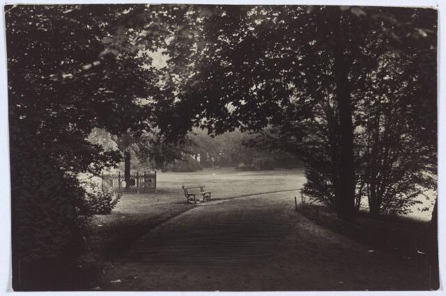 002989 - Wilhelminapark met links de Wilhelminaboom.