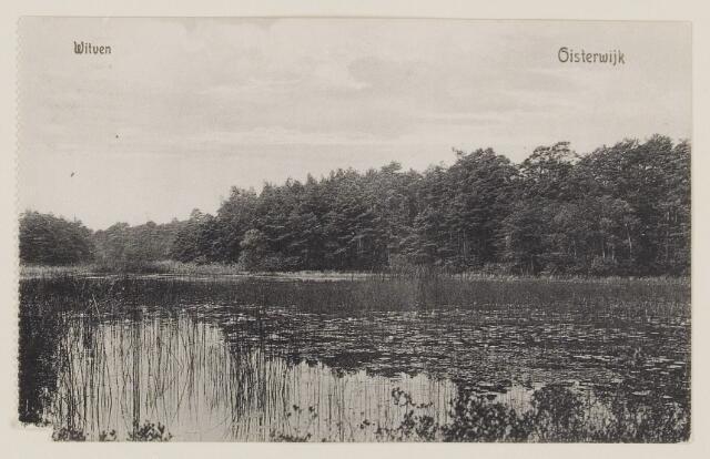 075321 - Serie ansichten over de Oisterwijkse Vennen.  Ven: Witven.