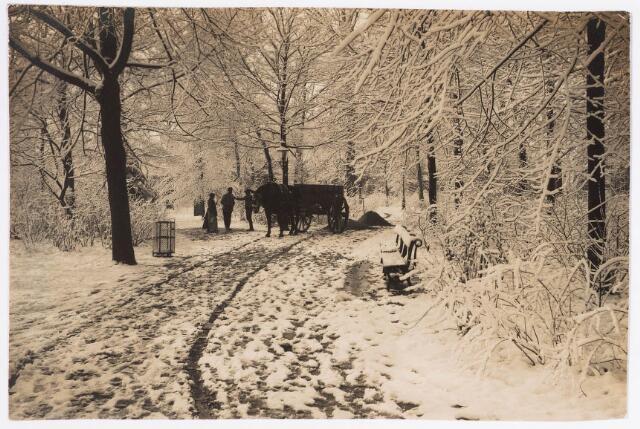 035117 - zicht in het Wilhelminapark in de winter van 1927
