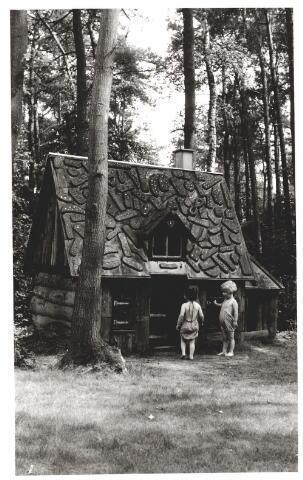 046380 - Medisch kinderdagverblijf Kleuterheil. Kleuters bij het peperkoekhuisje in het bos.