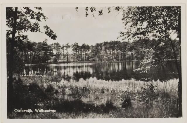075352 - Serie ansichten over de Oisterwijkse Vennen.  Ven: Wolfsputven