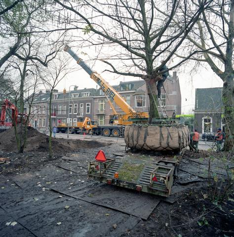 D-00730 - Verplaatsing van een boom in het Wilhelminapark / grote opknapbeurt park.
