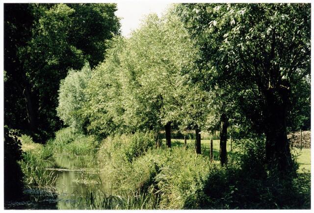 039907 - Natuurschoon in het gebied de Moerenburg
