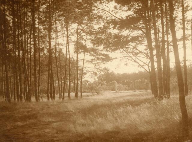 600783 - Landschap in de omgeving van Loon op Zand. Duinen en bossen.Kasteel Loon op Zand. Families Verheyen, Kolfschoten en Van Stratum