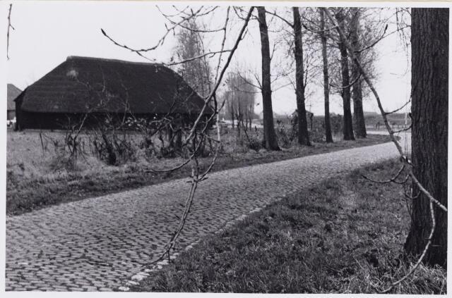 101589 - Den Hout. Steelhovenseweg.