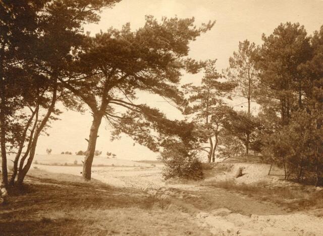 600773 - Landschap in de omgeving van Loon op Zand. Duinen en bossen.Kasteel Loon op Zand. Families Verheyen, Kolfschoten en Van Stratum