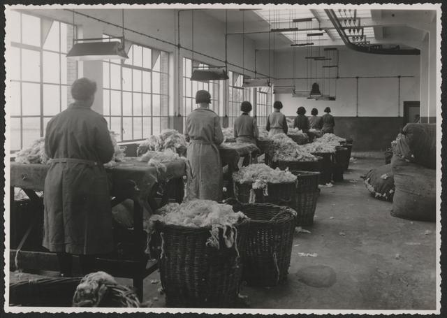 653260 - Wolhandel Wouters, Tilburg. De sorteerafdeling in de fabriek.