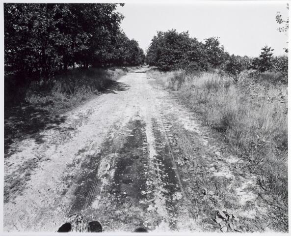 015375 - Landschap. Omgeving van de voormalige spoorlijn Tilburg - Turnhout, in de volksmond ´Beld lijntje´ genoemd
