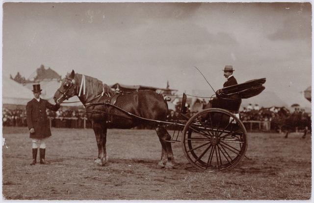103859 - Tentoonstelling Stad Tilburg 1909 gehouden van 15 juli - 8 augustus 1909  Handel Nijverheid en Kunst. Paard en wagen.