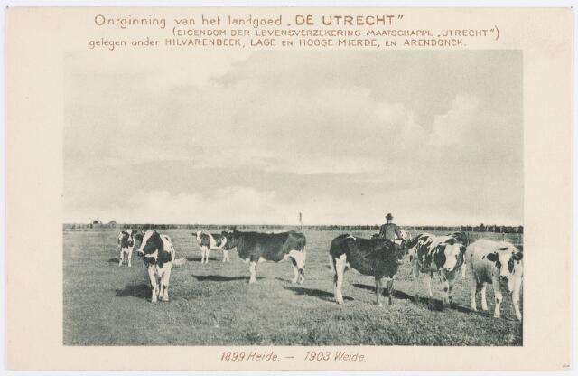 """055766 - Weidegrond van het landgoed """"De Utrecht"""", in 1899 heide"""