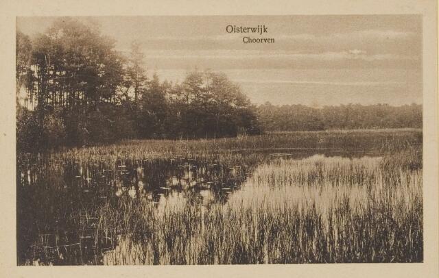075104 - Serie ansichten over de Oisterwijkse Vennen.  Ven: Choorven.