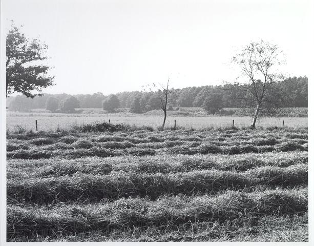015455 - Landschap. Fase I de Blaak
