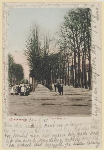 074392 - Trouwlaantje op de Lind te Oisterwijk.