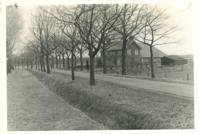 650859 - Gebied waar de latere woonwijk 'De Reeshof' is gebouwd.