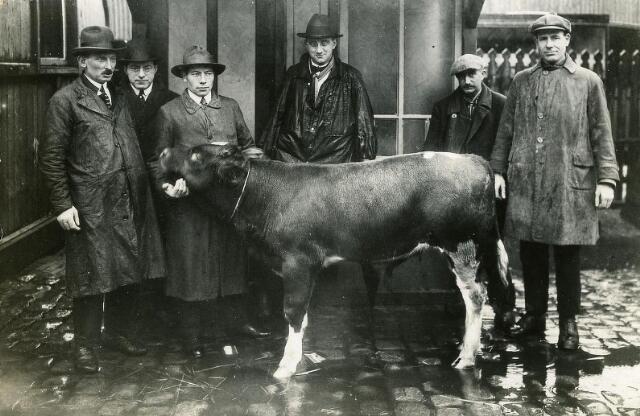 200533 - Midden met zwarte regenjas en hoed Janus van Berkel veehandelaar en inkoper voor de NCB te Eindhoven. Hier met  een prijswinnend stierkalf op het abbattoir te Tilburg.