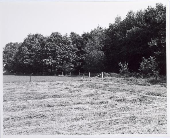 015415 - Landschap. Fase I de Blaak