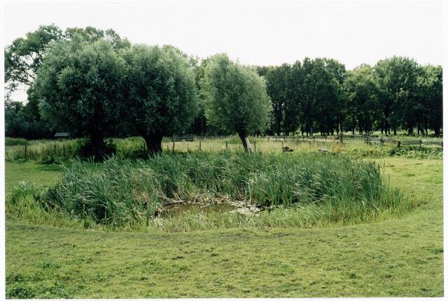 039905 - Drinkpoel in een weiland in de omgeving van het Grollegat in het gebied de Moerenburg.