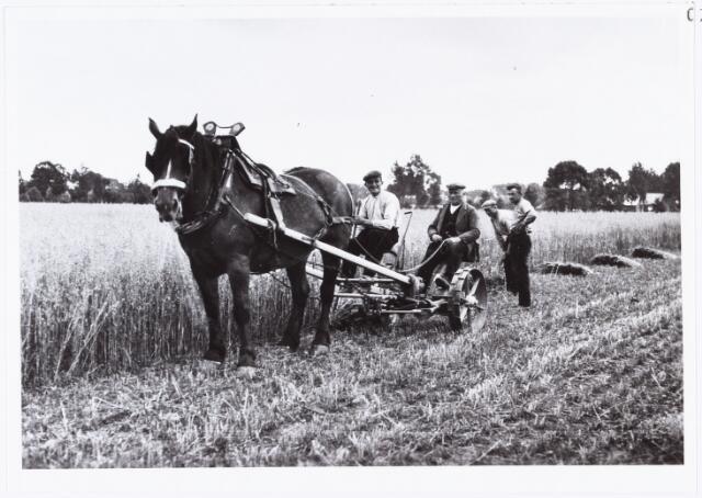 007253 - Landbouw. Boeren aan het werk met paard  ten noorden van de weg naar de trappisten, boer Ketelaars van de Enthovenseweg.