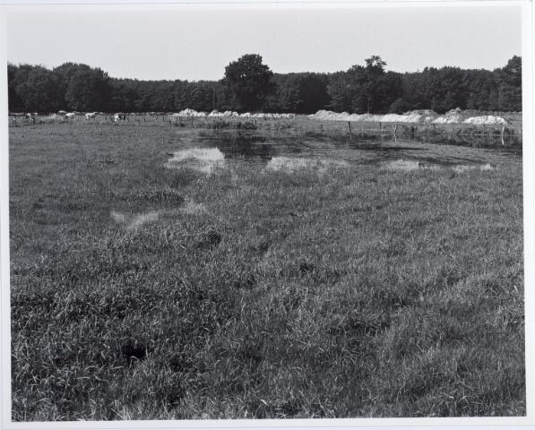 015383 - Landschap. Omgeving van de voormalige spoorlijn Tilburg - Turnhout, in de volksmond ´Bels lijntje´ genoemd