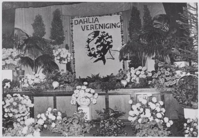 045574 - Tentoonstelling van de Goirlese dahliavereniging Prinses Beatrix in zaal De Linde (café v.d. Brand-Backx) aan de Dorpsstraat. Op het podium een afbeelding van prinses Beatrix in dahlia's.